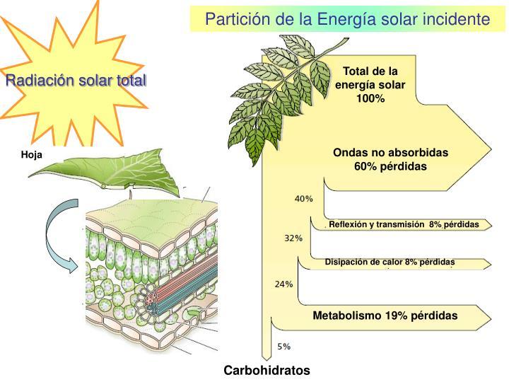Total de la                energía solar 100%