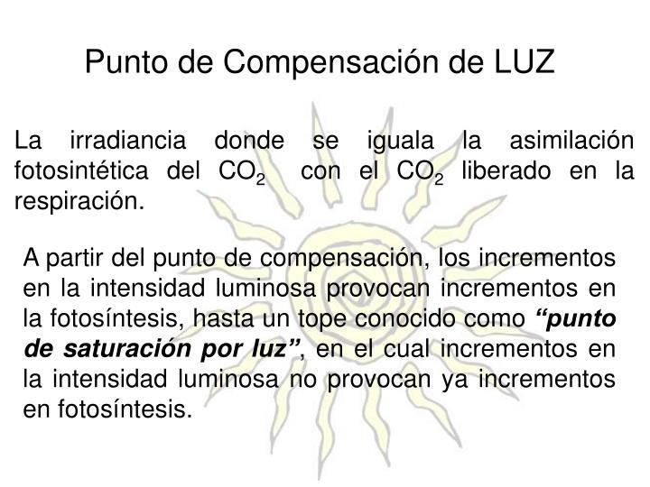 Punto de Compensación de LUZ