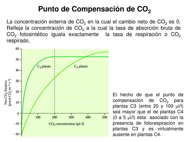 Punto de Compensación de CO