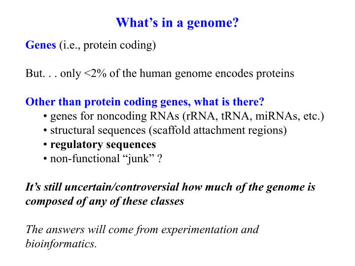 What's in a genome?