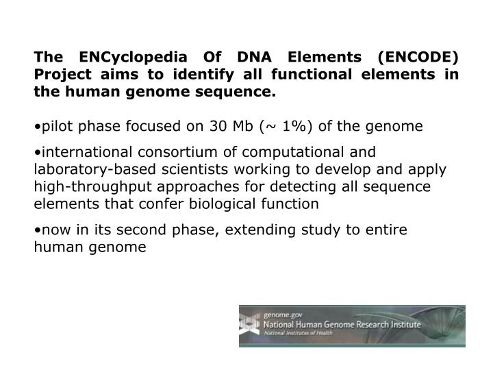 The ENCyclopedia Of DNA Elements (ENCODE) Project aims to identify all functional elements in the human genome sequence.
