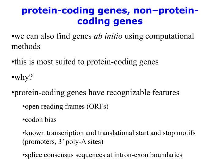 protein-coding genes, non–protein-coding genes