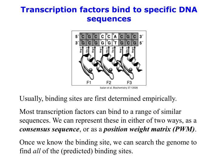 Isalan et al. Biochemistry 37:12026