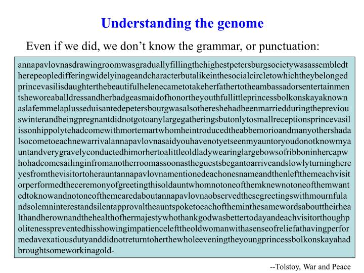 Understanding the genome