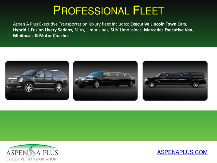 Professional Fleet