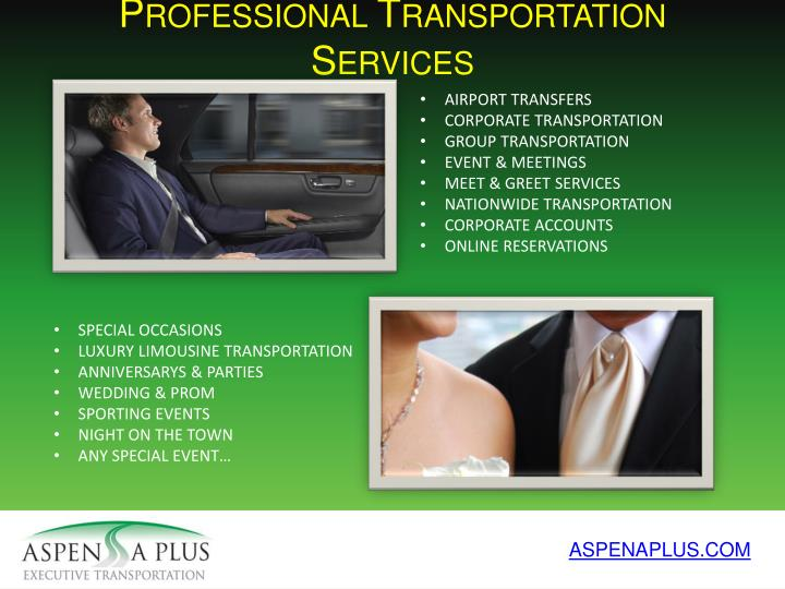 Professional Transportation Services