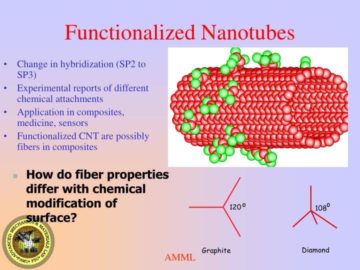 Functionalized Nanotubes