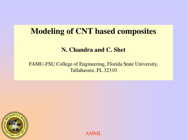 Modeling of CNT based composites