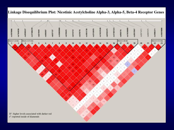 Linkage Disequilibrium Plot: Nicotinic Acetylcholine Alpha-3, Alpha-5, Beta-4 Receptor Genes