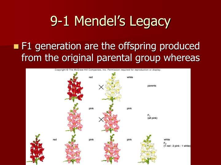 9-1 Mendel's Legacy