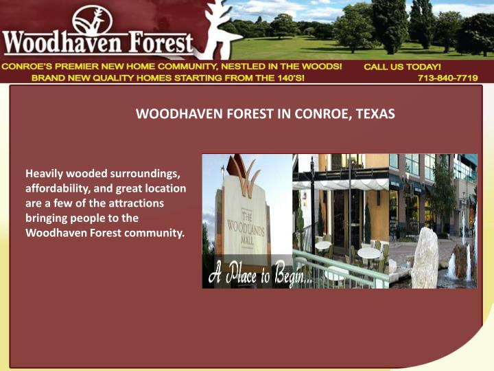 WOODHAVEN FOREST IN CONROE, TEXAS
