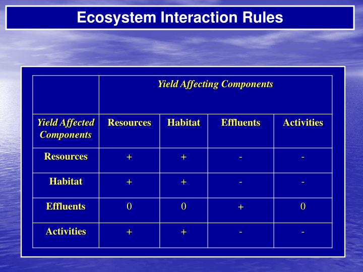 Ecosystem Interaction Rules