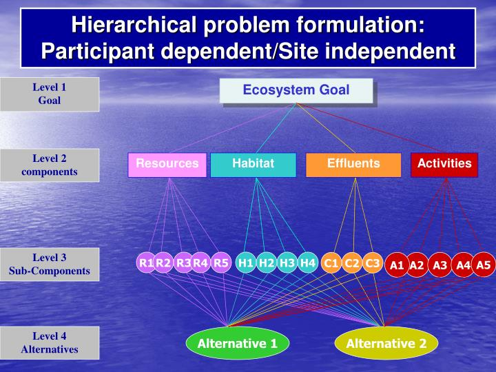 Hierarchical problem formulation: