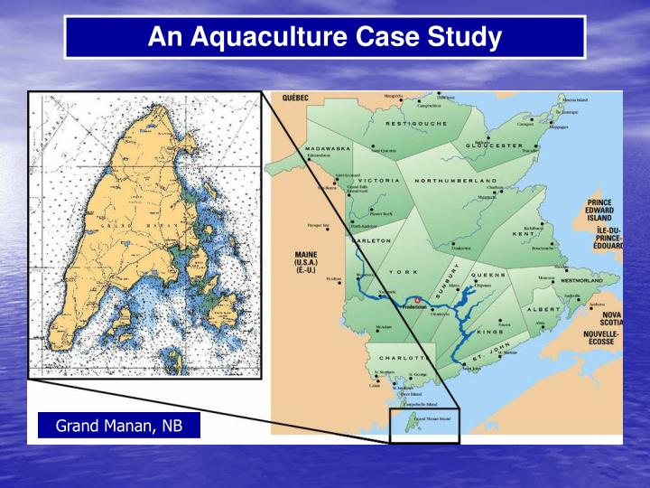 An Aquaculture Case Study