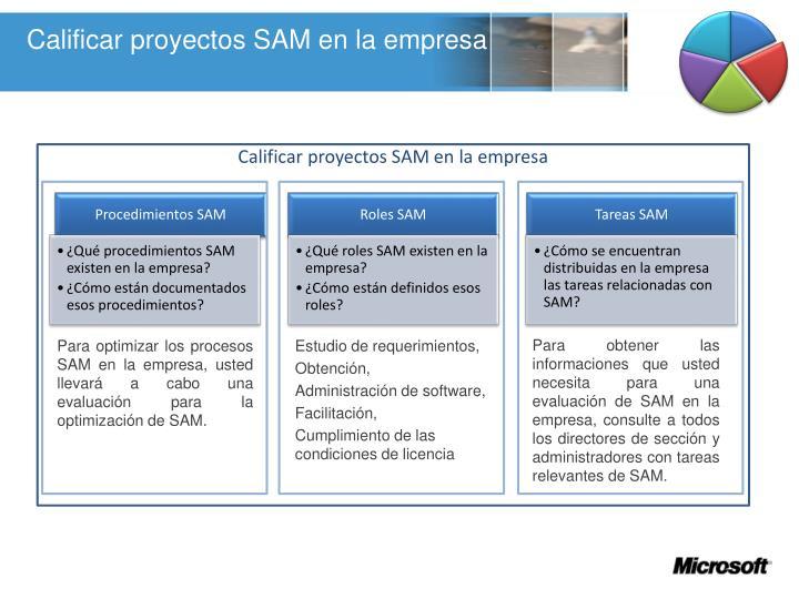 Calificar proyectos SAM en la empresa