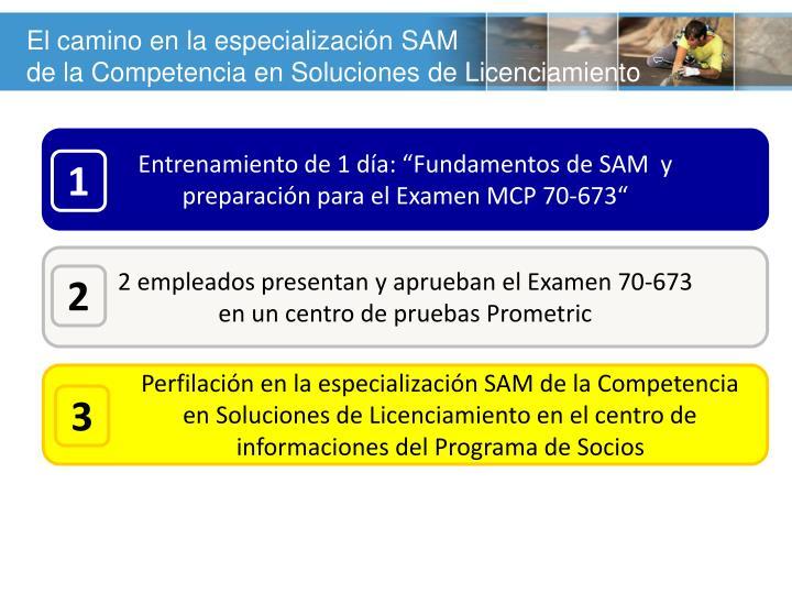 El camino en la especialización SAM