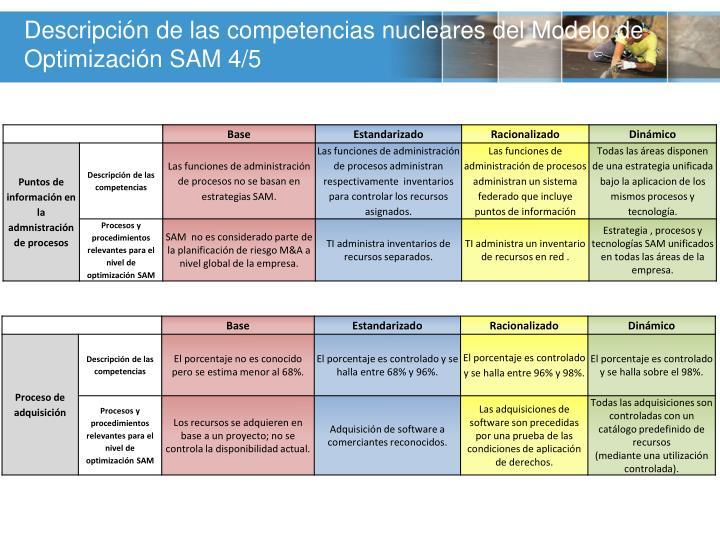 Descripción de las competencias nucleares del Modelo de Optimización SAM
