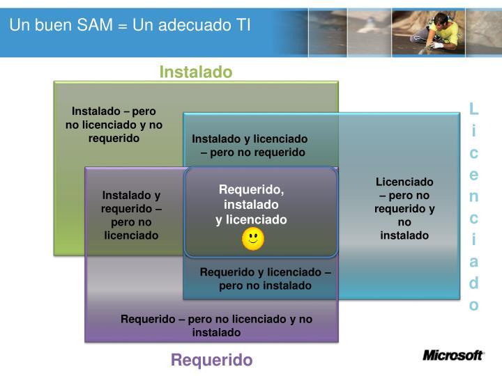 Un buen SAM = Un adecuado TI