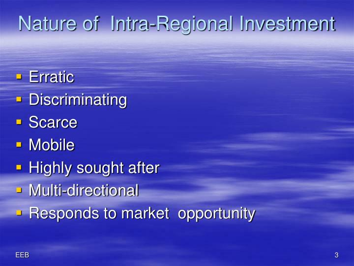 Nature of intra regional investment