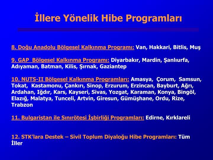 İllere Yönelik Hibe Programları