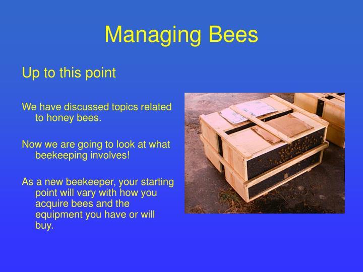 Managing Bees
