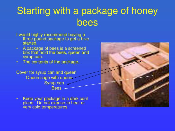 I would highly recommend buying a three pound package to get a hive started.