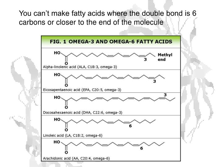 You can't make fatty acids where the double bond is 6 carbons or closer to the end of the molecule
