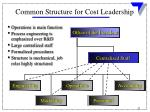 common structure for cost leadership