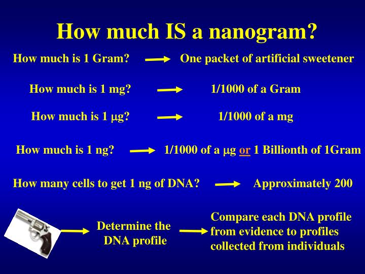 How much IS a nanogram?