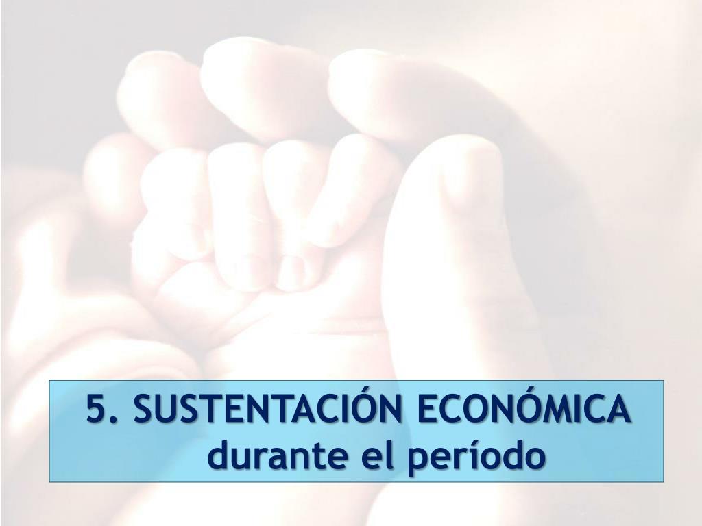 5. SUSTENTACIÓN ECONÓMICA durante el período