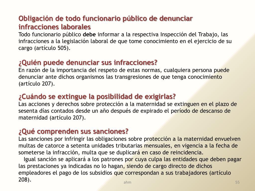 Obligación de todo funcionario público de denunciar