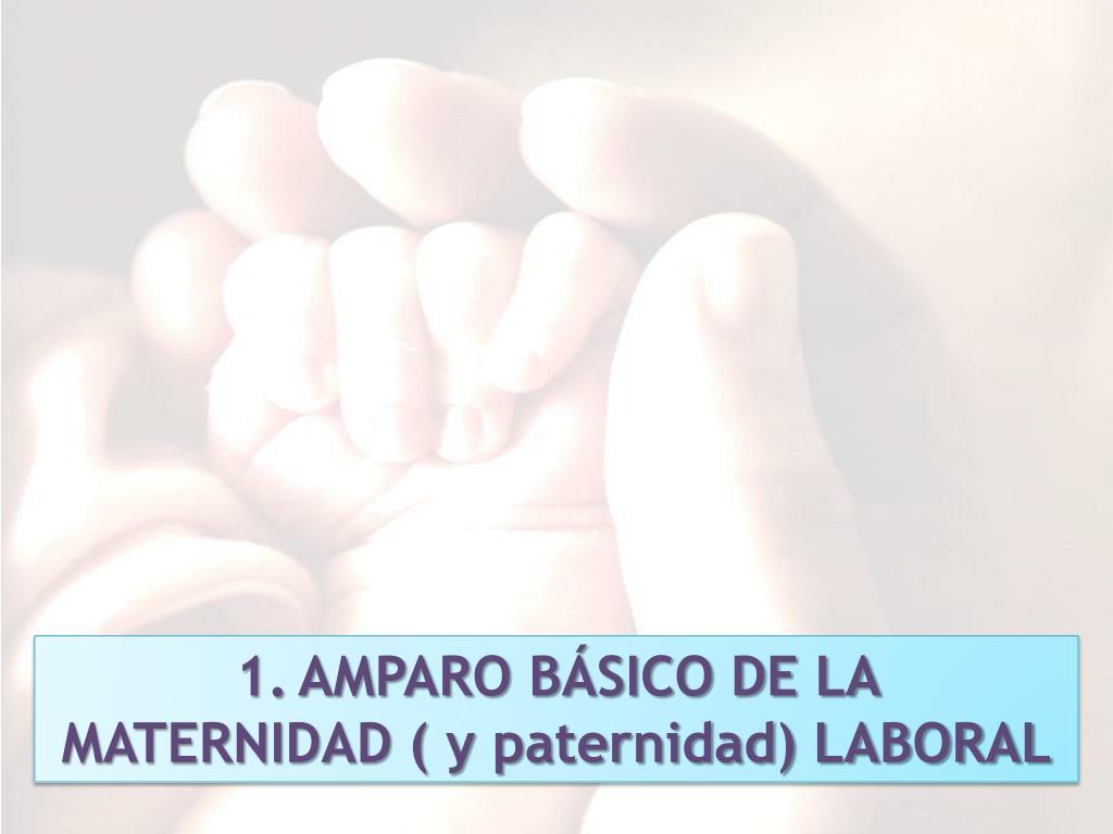 AMPARO BÁSICO DE LA