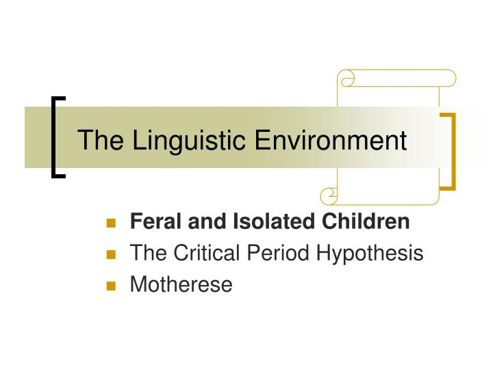 The linguistic environment