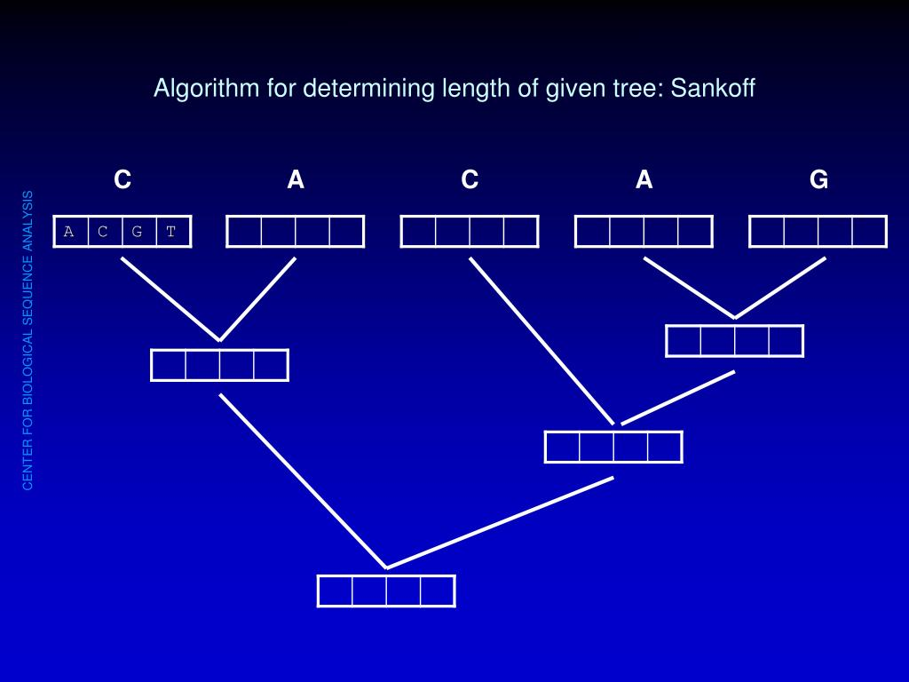 Algorithm for determining length of given tree: Sankoff