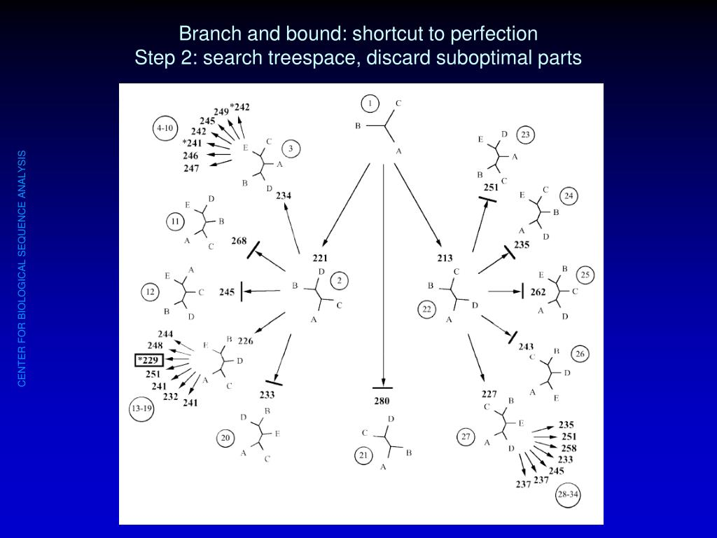 Branch and bound: shortcut to perfection