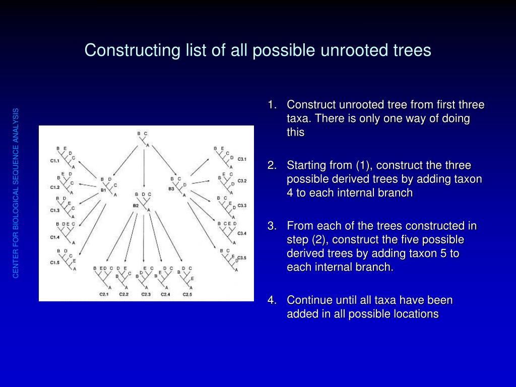 Constructing list of all possible unrooted trees