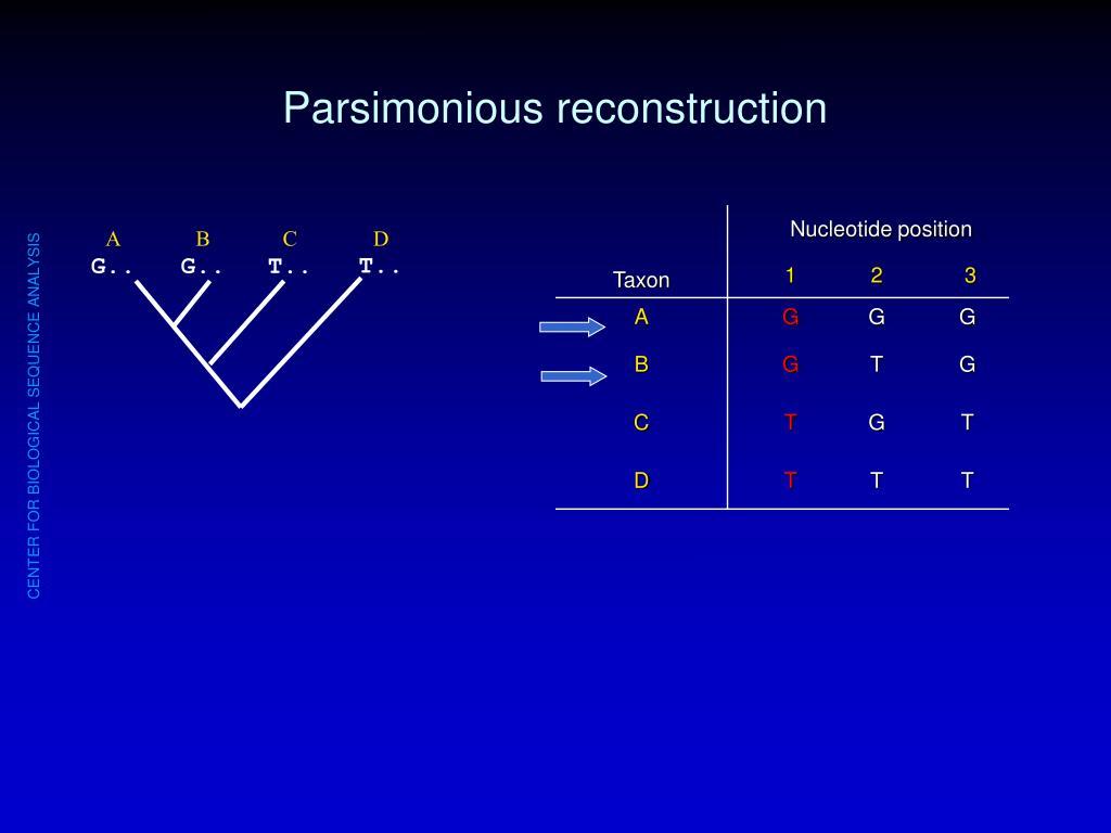 Parsimonious reconstruction
