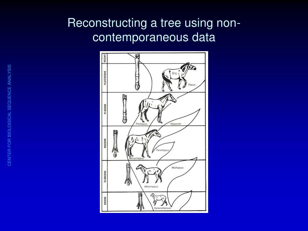 Reconstructing a tree using non-contemporaneous data
