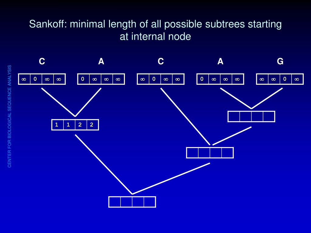 Sankoff: minimal length of all possible subtrees starting at internal node