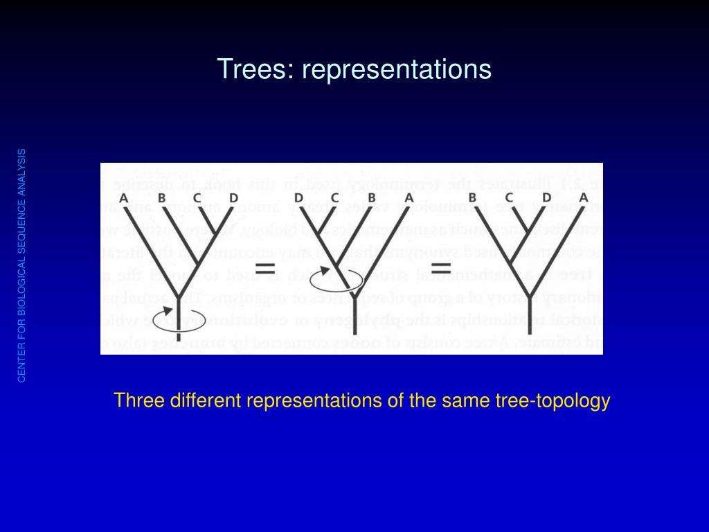 Trees: representations