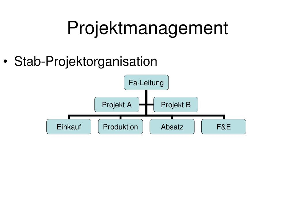 Stab-Projektorganisation