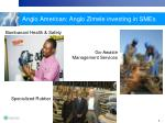 anglo american anglo zimele investing in smes