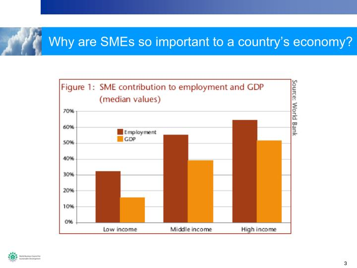 Why are SMEs so important to a country's economy?