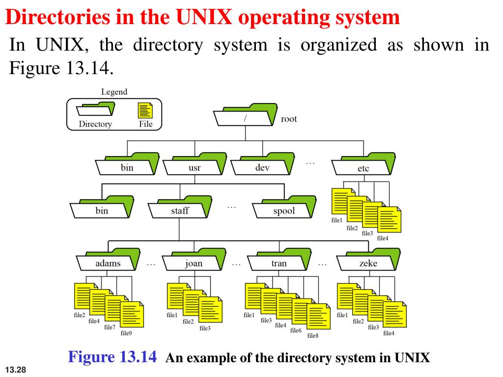 Directories in the UNIX operating system