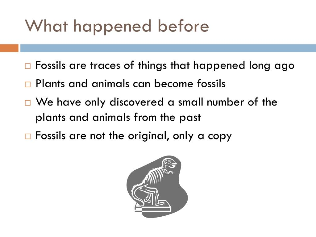 What happened before