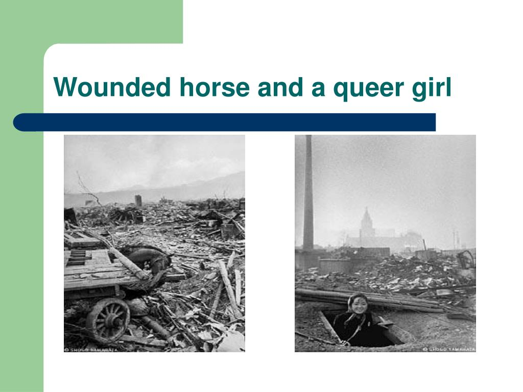 Wounded horse and a queer girl