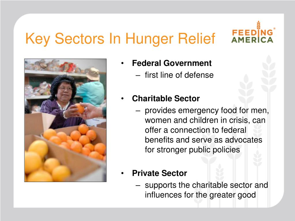 Key Sectors In Hunger Relief