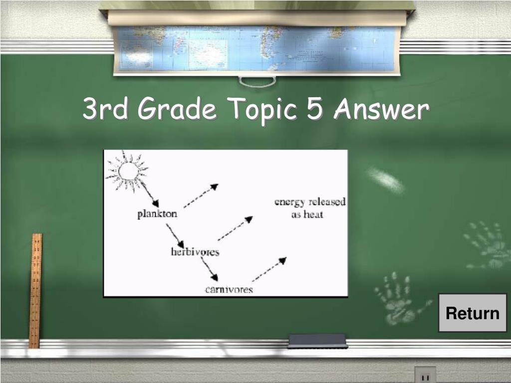 3rd Grade Topic 5 Answer