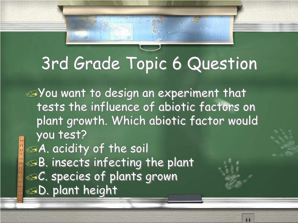 3rd Grade Topic 6 Question
