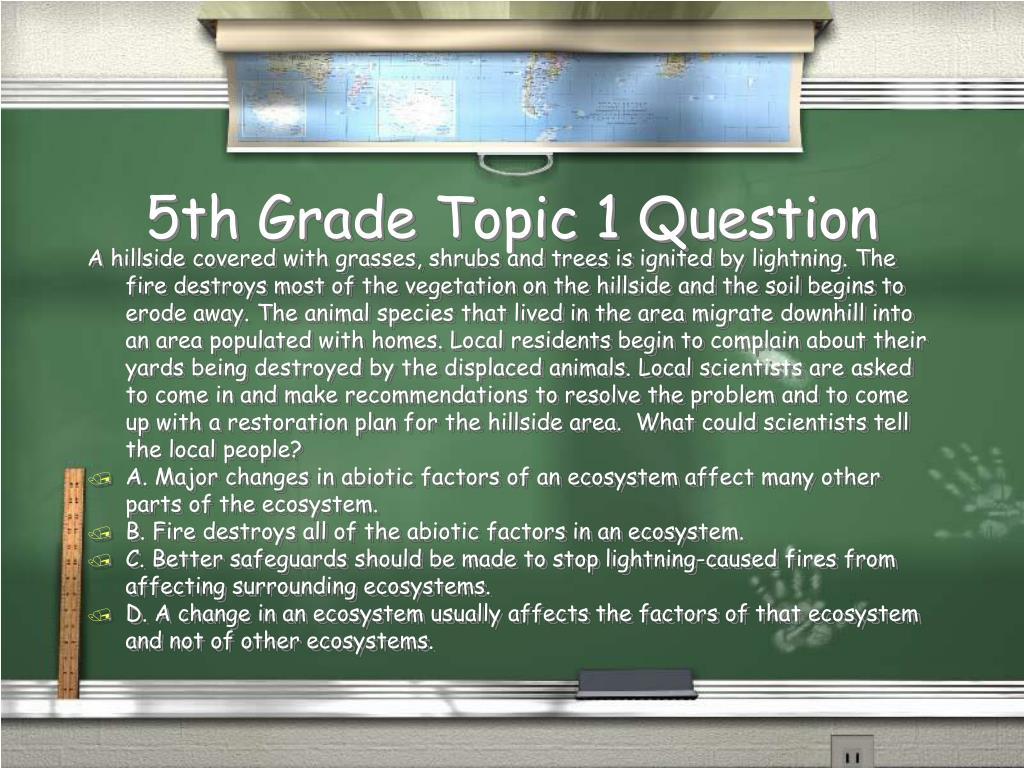 5th Grade Topic 1 Question